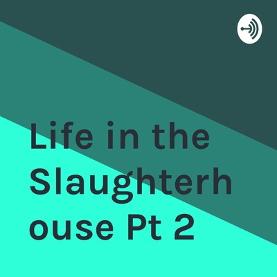 Life in the Slaughterhouse Pt 2