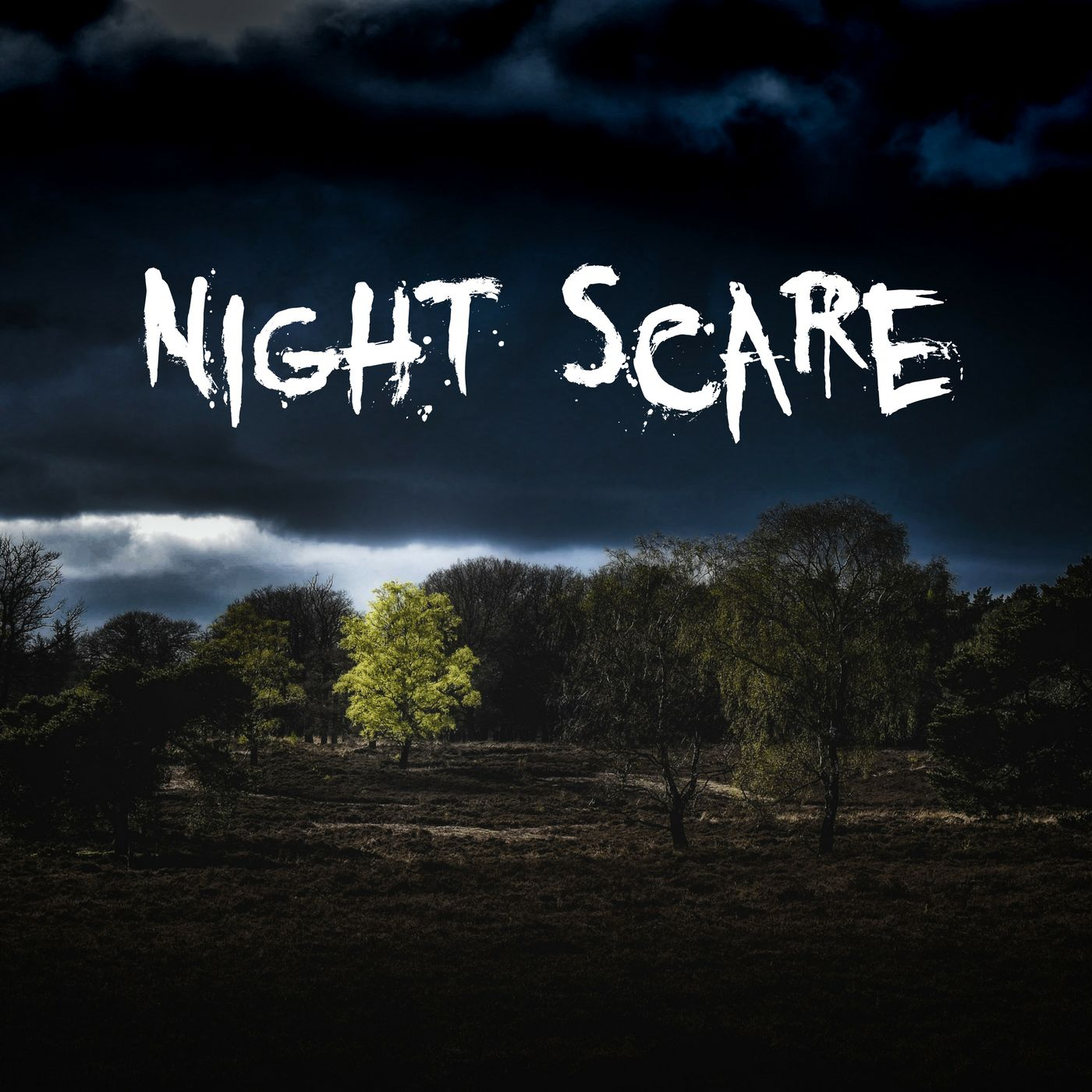 Night Scare
