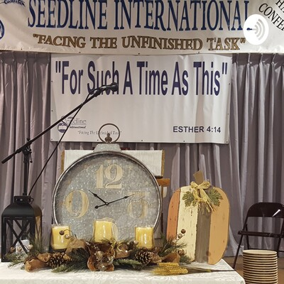 Seedline International