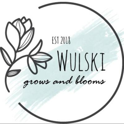 Refleactions