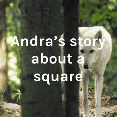 Andra's story about a square