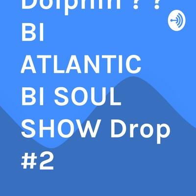 Roderick Realhammersmith Dolphin ? ? BI ATLANTIC BI SOUL SHOW Drop #2