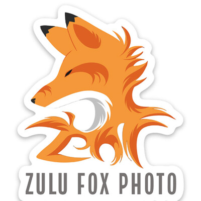 Zulu Fox Photo