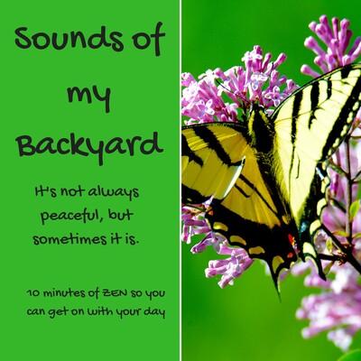 Sounds of my Backyard