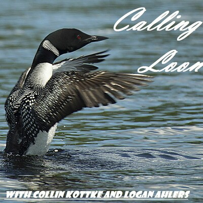 Calling Loon Podcast