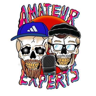 Amateur Experts