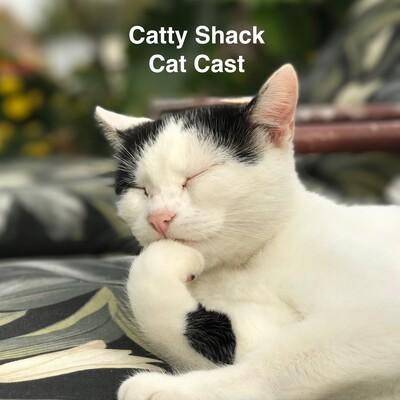 Catty Shack Catcast