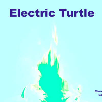 Electric turtle podcast