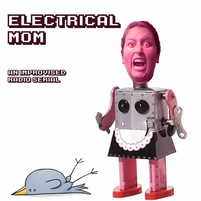 Electrical Mom