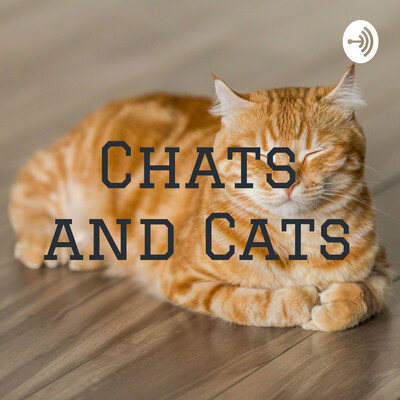 Chats and Cats