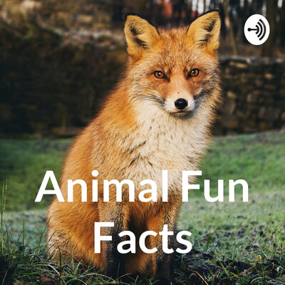 Animal Facts: Is it True?
