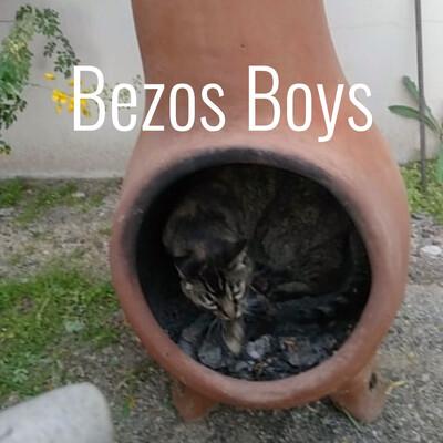 Bezos Boys