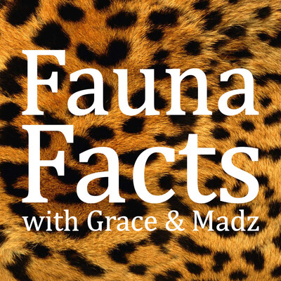 Fauna Facts Podcast
