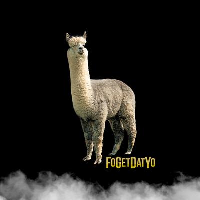 FGDY Podcast