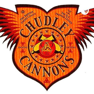 Chudley Cannons: a wild ride