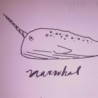 Cosmic Narwhal Podcast