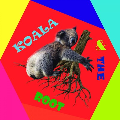 Koala and The Root