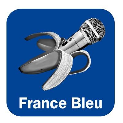 Les TASONS de France Bleu Berry