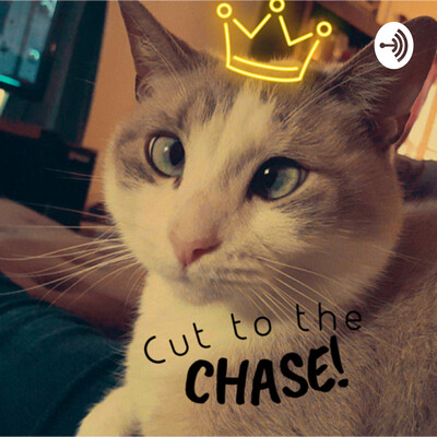 Cut to the Chase!