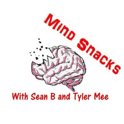 Mind Snacks Podcast