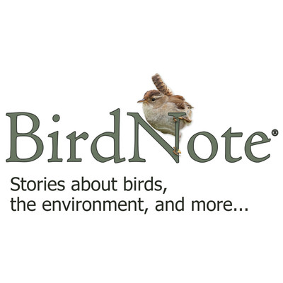 BirdNote