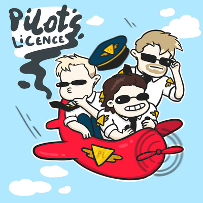 Pilots Licence
