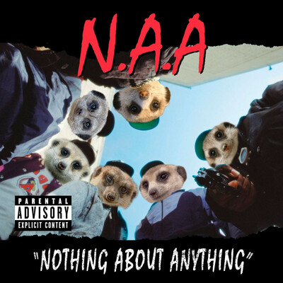 Nothing About Anything
