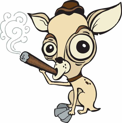 Tales of the Smoking Chihuahua