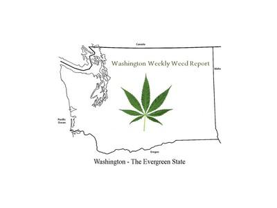 Washington Weekly Weed Report