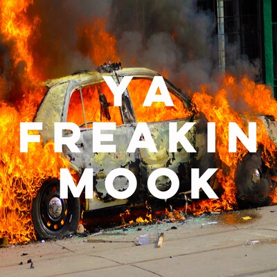 Ya Freakin Mook