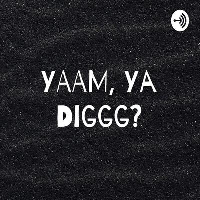 YAAM, Ya Diggg?