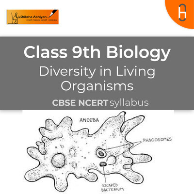 The hierarchy of classification - Groups | CBSE | Class 9 | Biology | Living organism