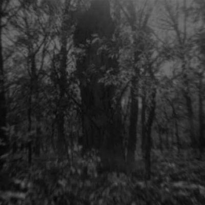 Darkness Buried Deep