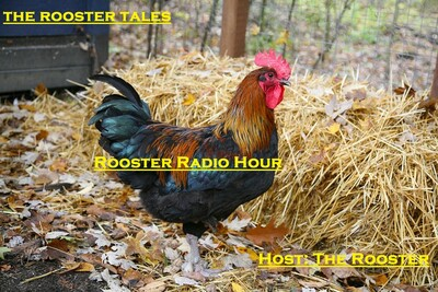 Rooster Radio Hour