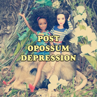 Post Opossum Depression