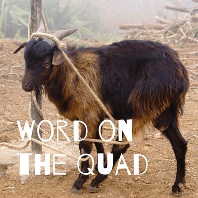 Word on the Quad