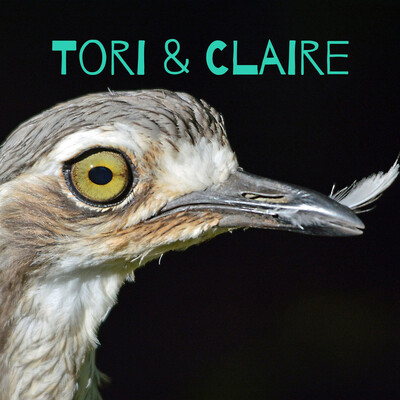 Tori & Claire : In Search of Something