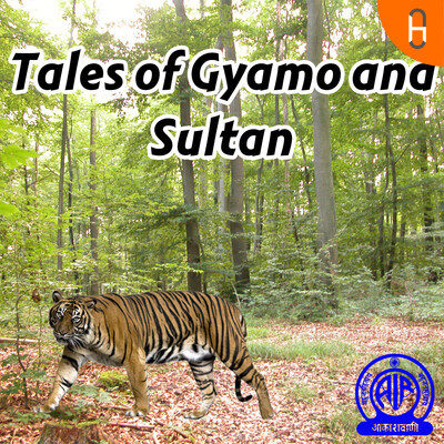 Tales of Gyamo and Sultan