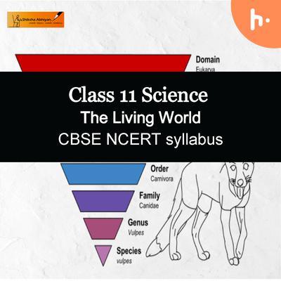 Theory | CBSE | Class 11 | Biology | The Living World