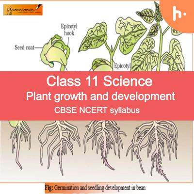 Theory Part-2 | Class 11 | Plant Growth and Developmnet