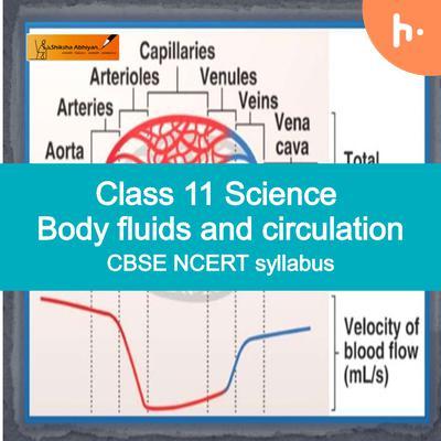Theory part | CBSE | Class 11 | Biology | Body Fluids and Circulation