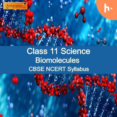 Theory Set-2 |CBSE Class 11 | Biology | Biomolecules