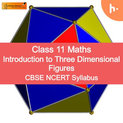 Theory Set | Introduction to Three Dimensional - #CBSE Class 11 Maths Geometry