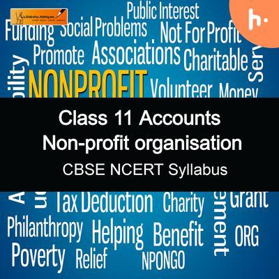 Theory Set   CBSE   Class 11   Non Profit Organizations