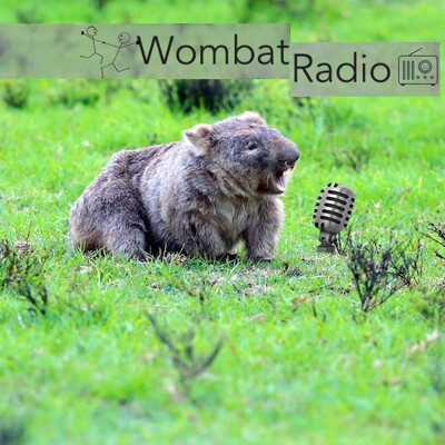 Wombat Radio Podcast with choreographers interrogating artistic process.