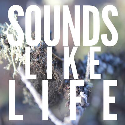 Sounds Like Life