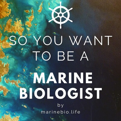 So You Want to Be a Marine Biologist