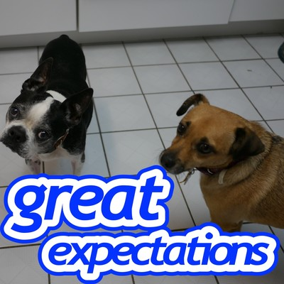 The Great Expectations Podcast