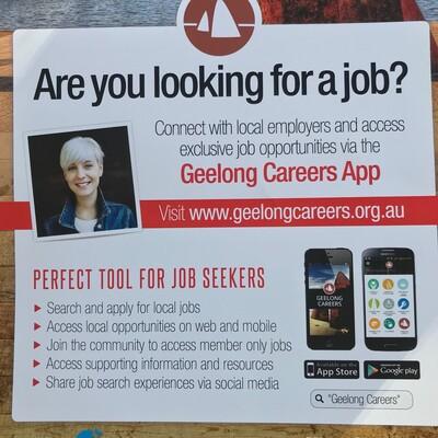 My Brilliant Geelong Career