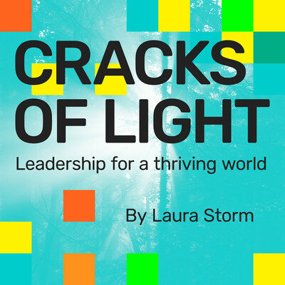 Cracks of Light: Leadership for a Thriving World